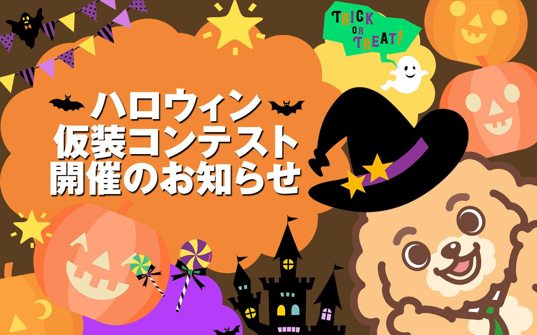 ハロウィン仮装コンテスト開催のお知らせ