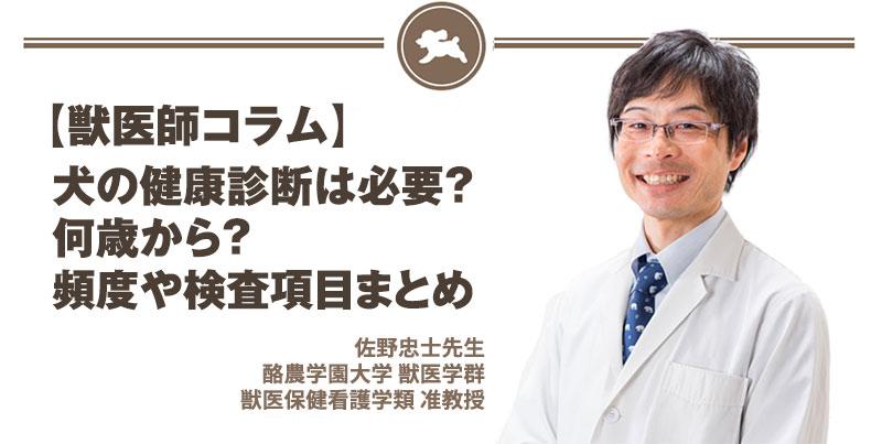 犬の健康診断は必要?何歳から?頻度や検査項目まとめ
