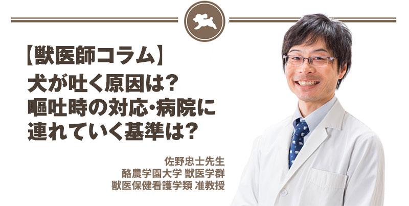 【獣医師コラム File:7】犬が吐く原因は?嘔吐時の対応・病院に連れていく基準は?