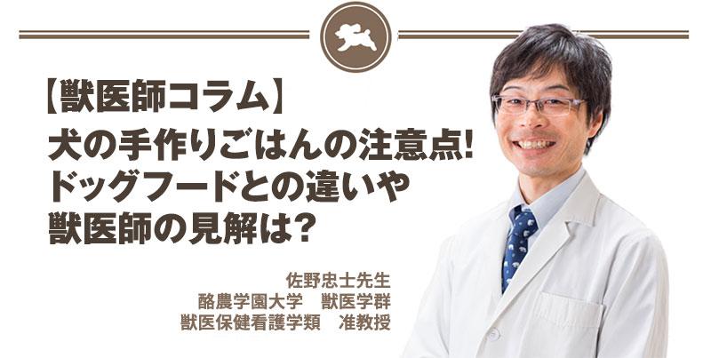 【獣医師コラム File:8】犬の手作りごはんの注意点!ドッグフードとの違いや獣医師の見解は?